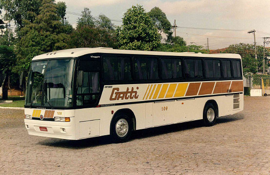 historico-gatti-6
